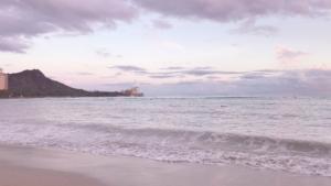 aloha and mahalo